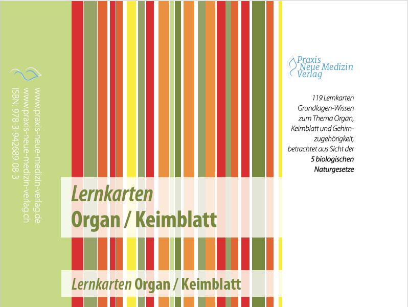Lernkarten Organ / Keimblatt